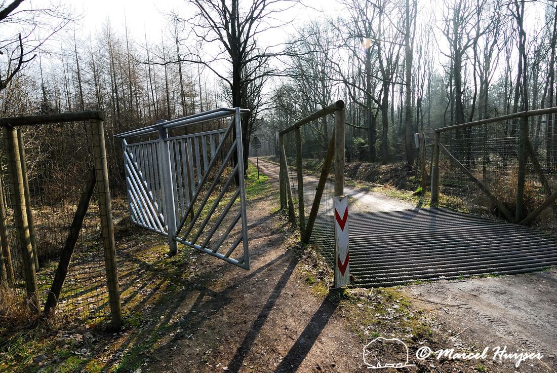 Horse swing gate, Heugterdijk, Weerterbos, near Maarheze, The Netherlands