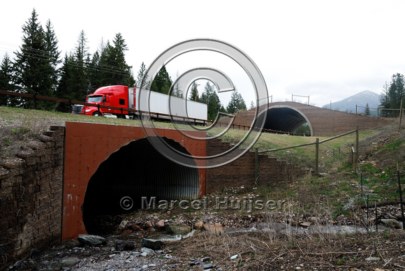 Wildlife underpass and wildlife overpass along US 93 on the Flathead Indian Reservation, Montana, USA