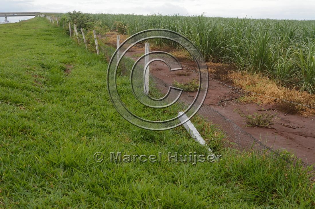 Damaged wildlife fence along the SP-225 motorway, near Brotas, São Paulo, Brazil