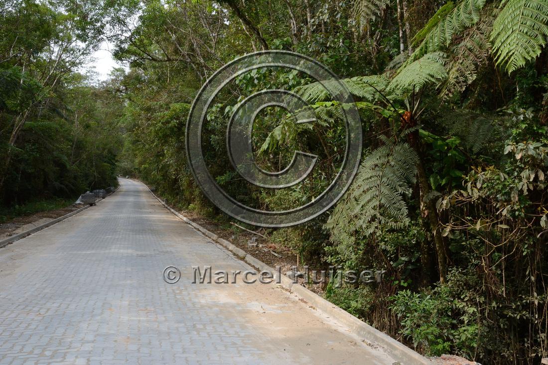 Road through Parque Estadual 'Carlos Botelho' under reconstruction