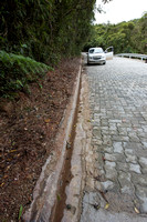 The concrete curb may well be a barrier to small species, Brazil