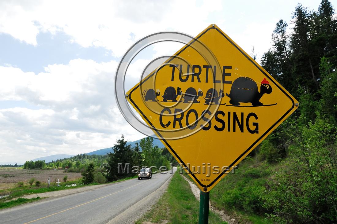 Warning sign, turtle crossing, near Creston, British Columbia, Canada