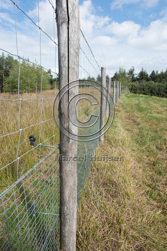 Wildlife fence along A28 motorway, near Spier, Drenthe, The Neth
