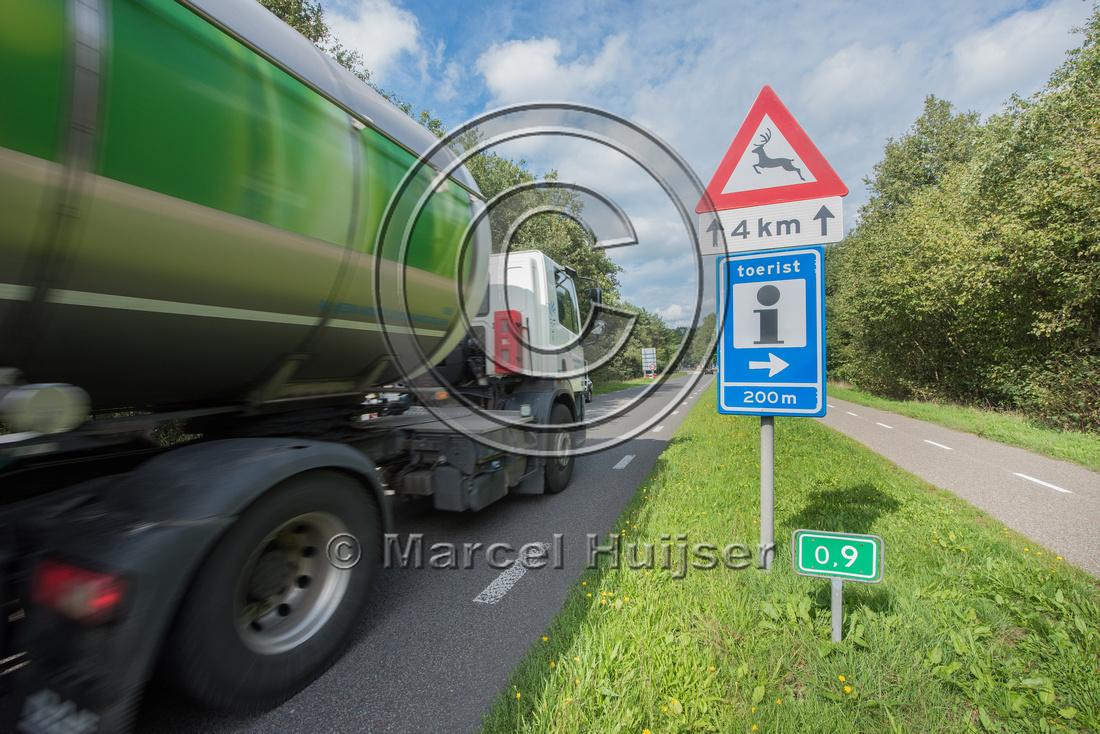 Wildlife warning sign for deer, Spieregerweg, near Spier, Drenth