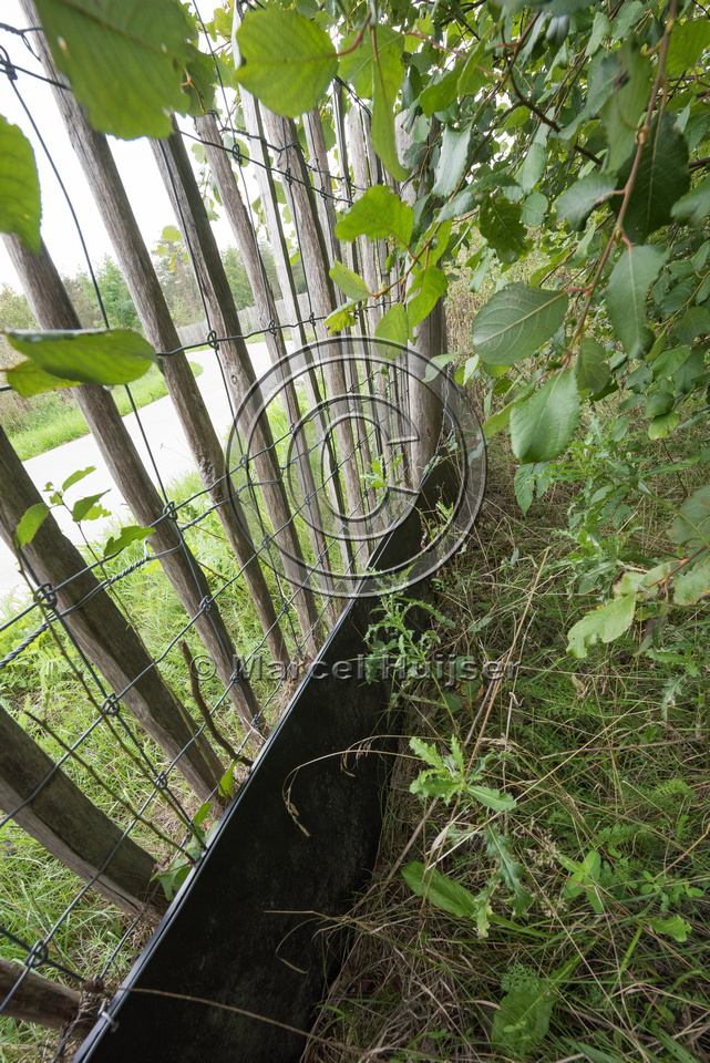 Wildlife fence for large and medium mammal species, as well as a