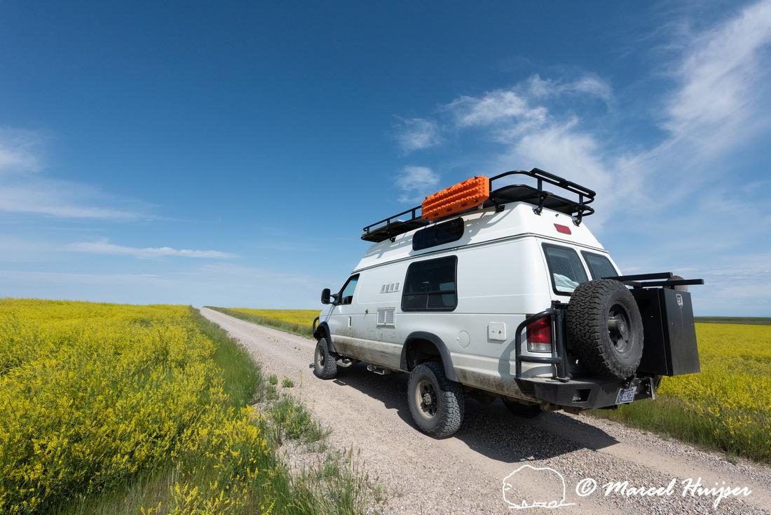 Camper van with Yellow Sweetclover (Melilotus officinalis) (non-