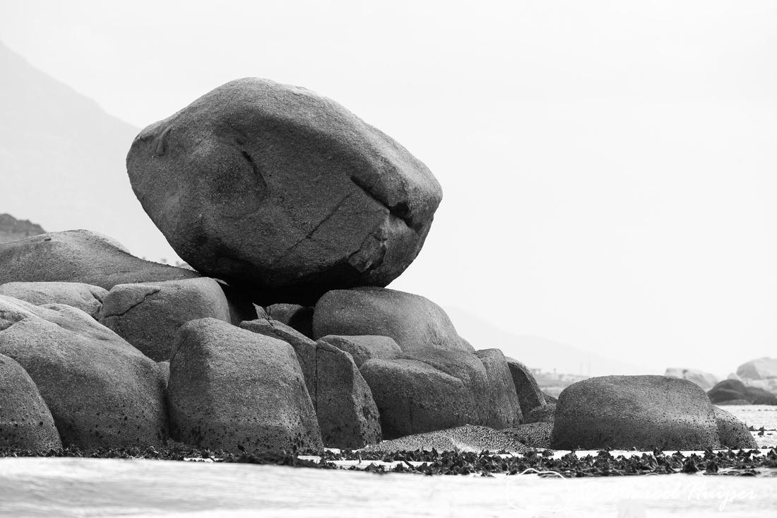 Boulders, False Bay, Western Cape, South Africa