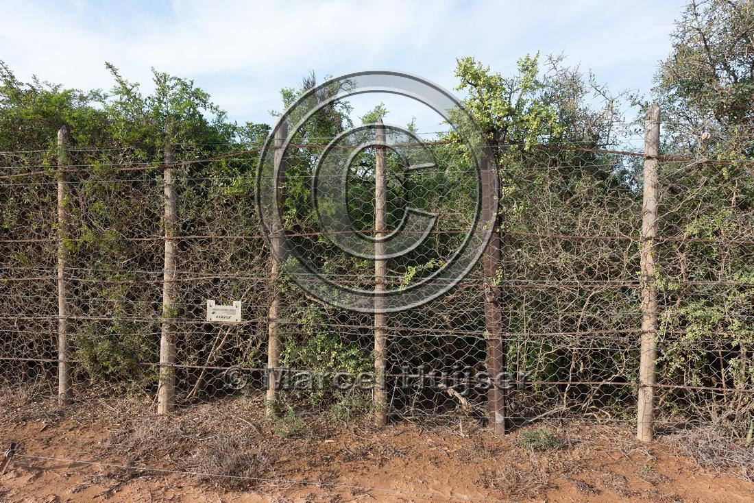 Elephant fence, Addo Elephant National Park, Eastern Cape, South