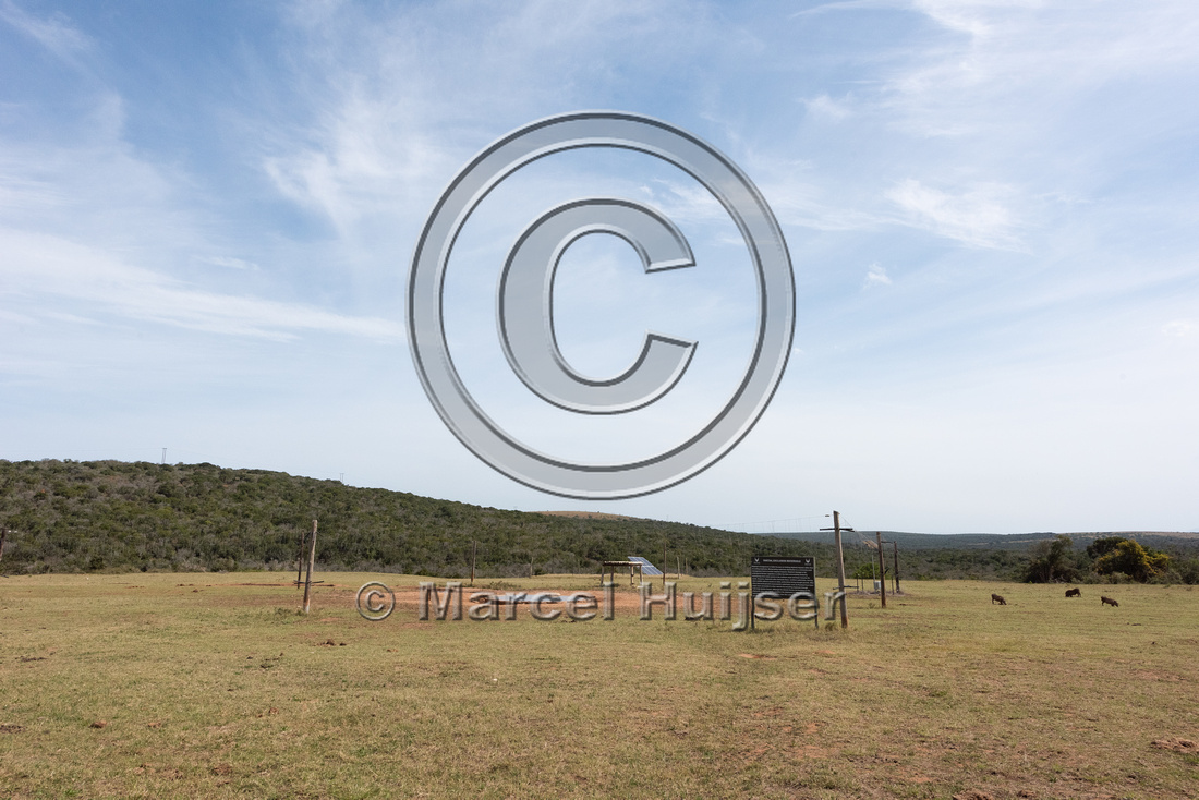 Electrified strings to exclude elephants from a waterhole, Addo