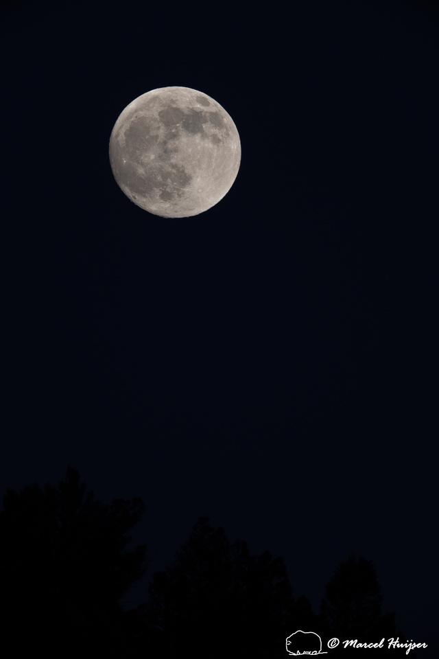 Near full moon, Wyoming