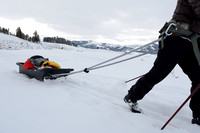Bethanie Walder pulls cargo sled on cross country skis, Wyoming, USA