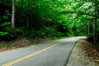 Road through Kanawha State Forest, West Virginia, USA