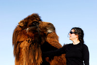 Bethanie with a domesticated bactrian camel (Camelus bactrianus), near Omnodelger, Khentii, Mongolia