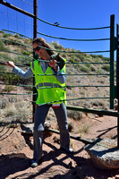Fernanda Delborgo Abra demonstrates a one-way gate designed to allow wildlife to escape from the fenced road corridor, Arizona, USA