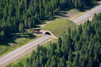 Wildlife overpass, US Hwy 93, Flathead Indian Reservation, Montana, USA