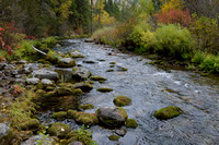 Fall colors along Rattlesnake Creek, Rattlesnake Wilderness, Montana, USA