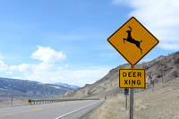 Deer crossing warning sign, xing, US Hwy 89, near Gardiner, Montana, USA