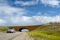 Wildlife overpass (west) for pronghorn (Antilocapra americana) (46 m (150 ft) wide), on the Path of the Pronghorn, Trapper's Point, US Hwy 191, near Pinedale, Wyoming, USA