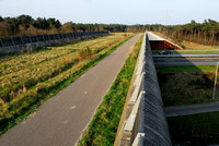 Multifunctional overpass (wildlife and bicycle pedestrian path) Slabroek, about 15 m wide, across A50 motorway, north of Uden, The Netherlands