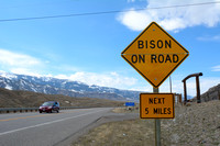 Wildlife warning sign, Bison on road, next 5 miles, US Hwy 89, northern edge of Gardiner, Montana, USA