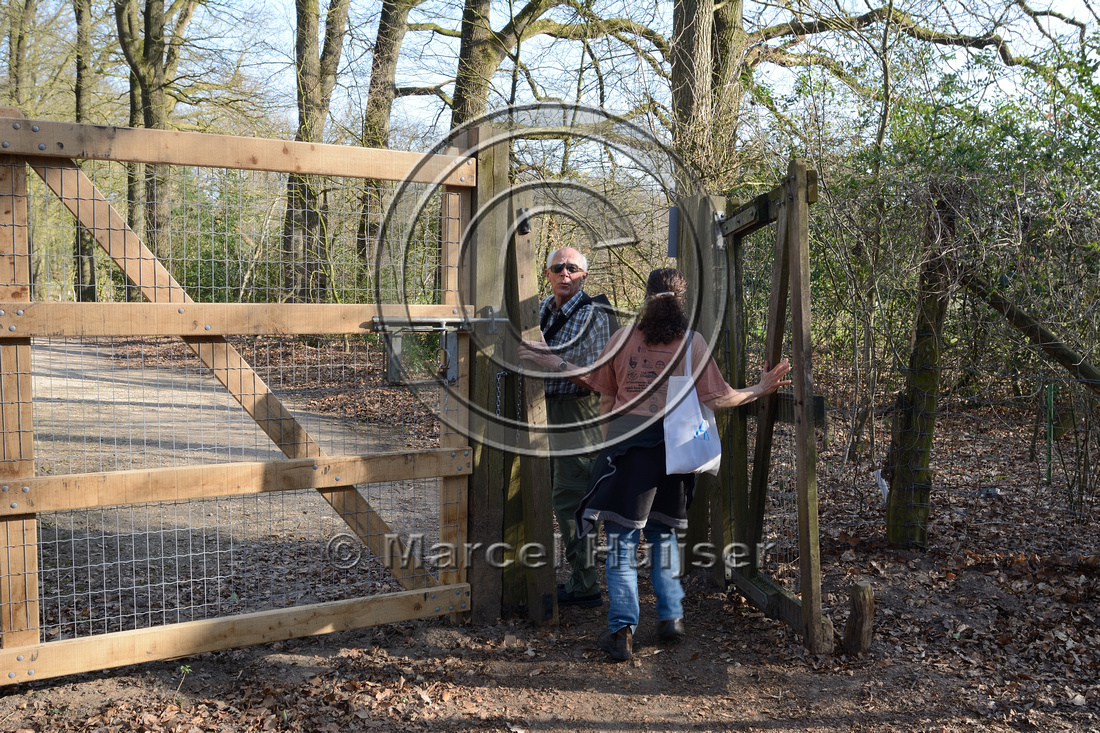 Swing gate, set at an angle so it closes through gravity, The Netherlands