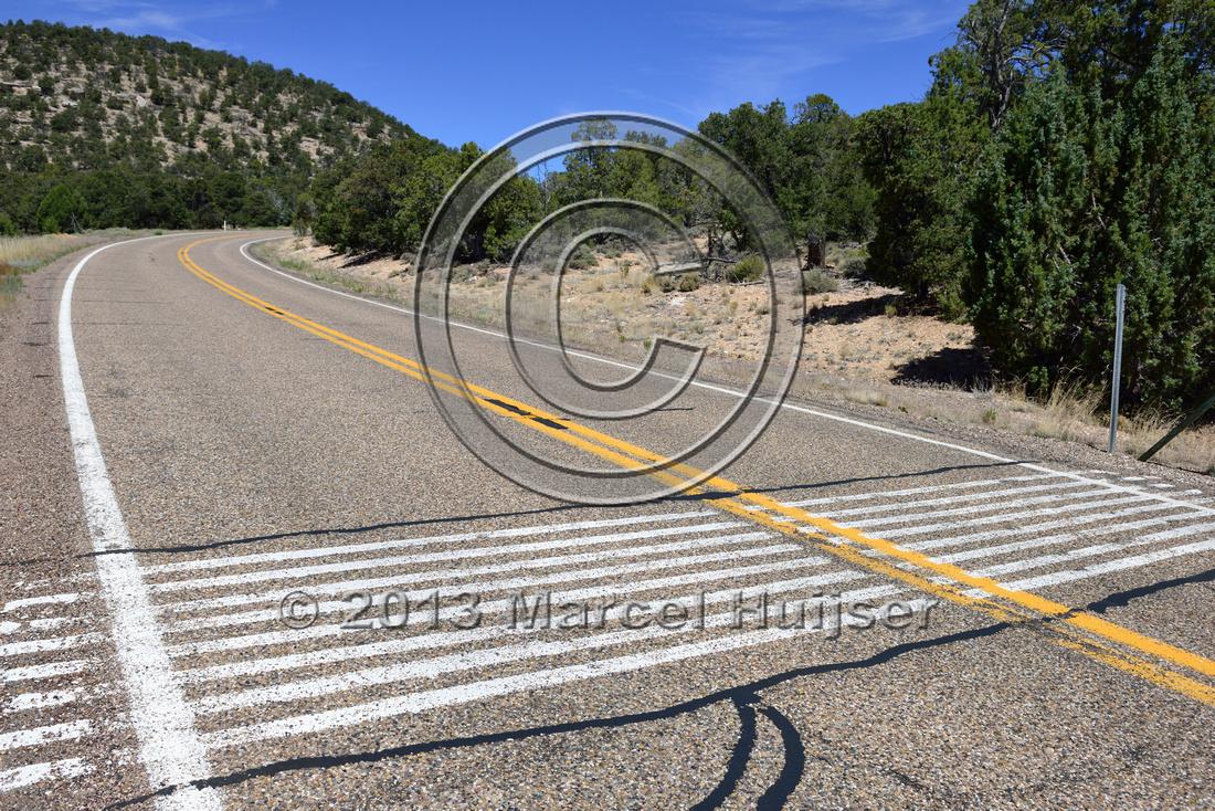 Marcel Huijser Photography Road Ecology Blog Virtual