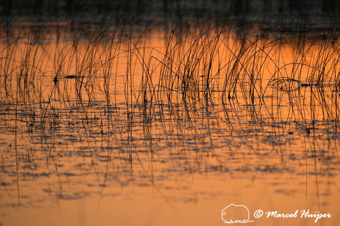 Sunset, Valentine National Wildlife Refuge, Nebraska, USA