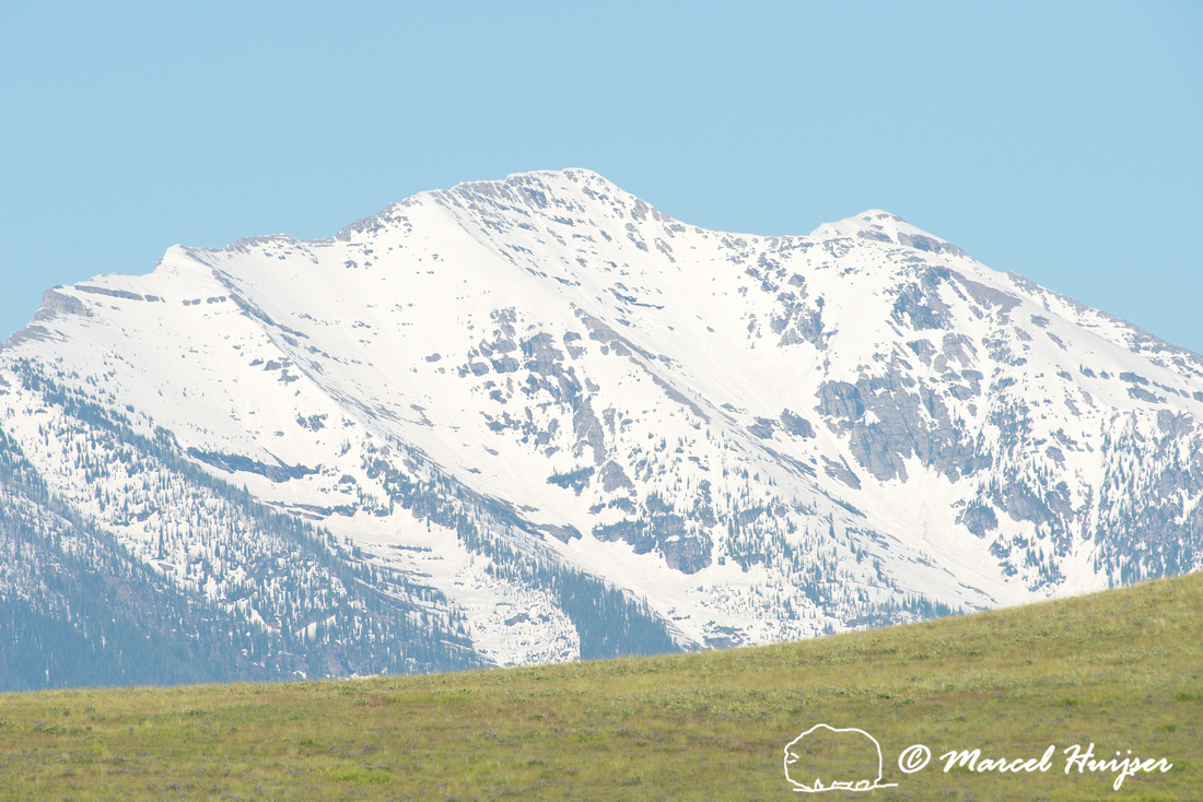 Snow-capped Mission Mountains and green grasslands,  National Bi