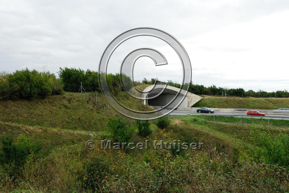 Multifunctional overpass (wildlife, bicyclists, pedestrians; about 100 m wide), across A4 motorway, Parndorf, Austria