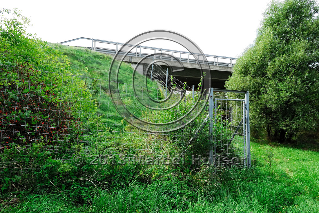 Wildlife fence and gate at multifunctional underpass, under A4 motorway, Parndorf, Austria