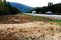 Brushing of right-of-way shrubs in the right-of-way, BC