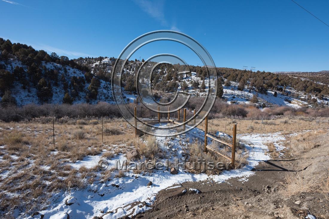 Wildlife jump-out, Utah, USA