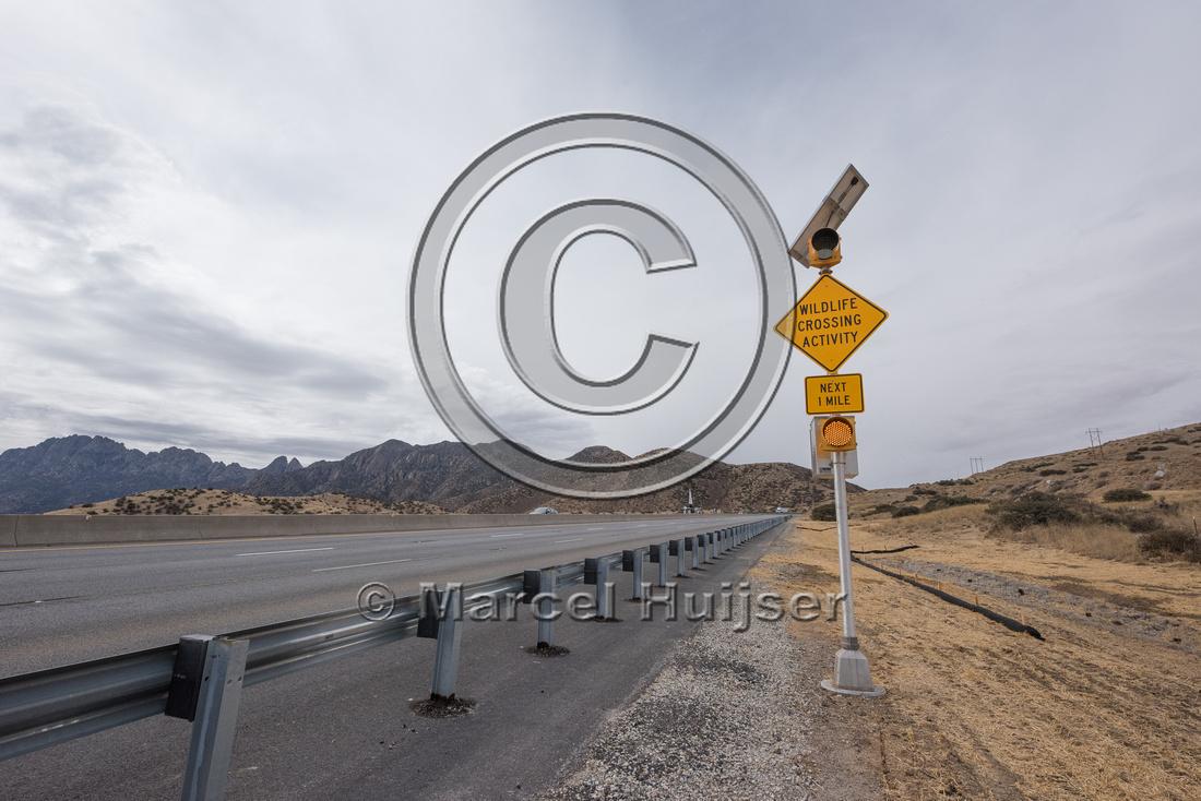 Wildlife warning sign, wildlife crossing activity, New Mexico