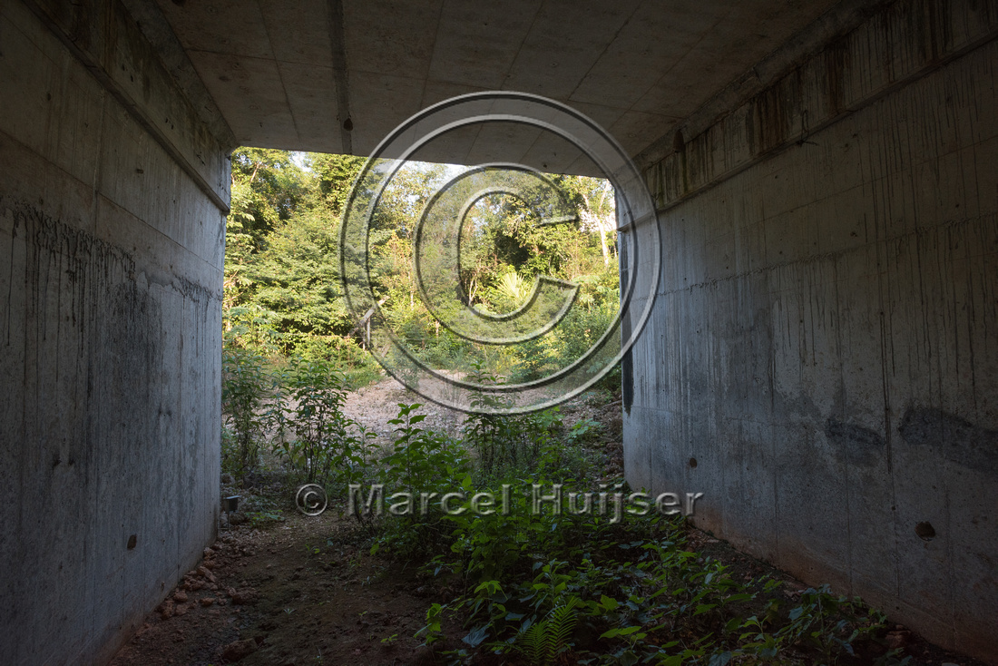 Wildlife underpass, Nuevo Xcan-Playa Del Carmen highway, Quintan