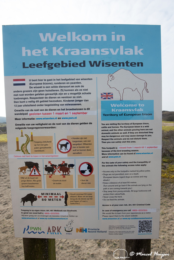 Area with reintroduced European bison (Bison bonasus), Kraansvla