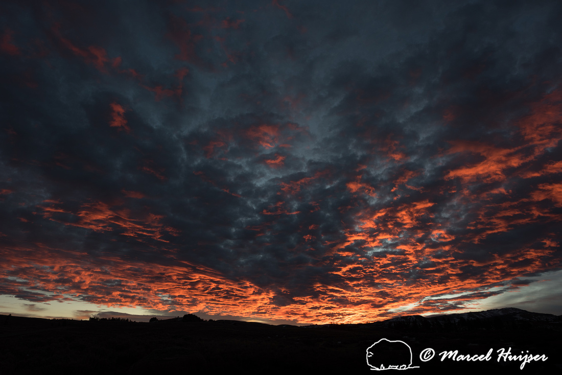 Sunrise, Yellowstone National Park, Wyoming, USA