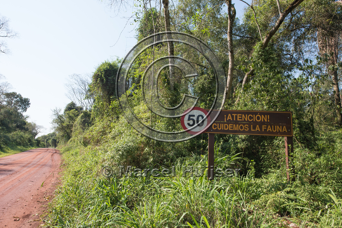 Wildlife warning sign and reduced speed limit to 50 km per hour