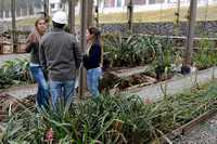 Fernanda Abra, José Ridente and Jamille Consulin at a plant nursery associated with the ongoing construction of the northern outer beltway (Rodoanel Norte) of São Paulo, Brazil
