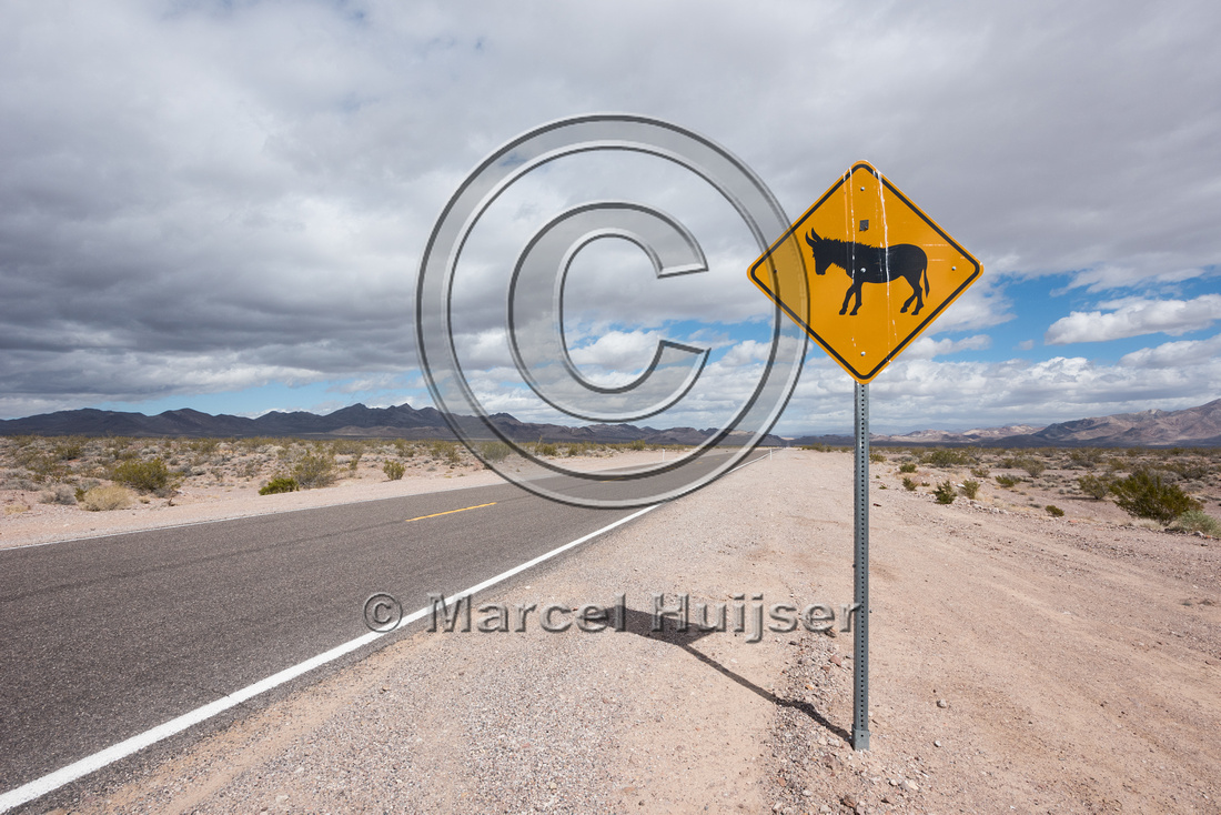 Warning sign for burros (feral donkeys), Nevada, USA