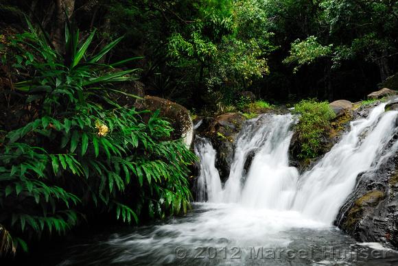 Marcel Huijser Photography | Hawaii | Ginger pool at base of waterfall, Kalalau, Kauai, Hawaii, USA