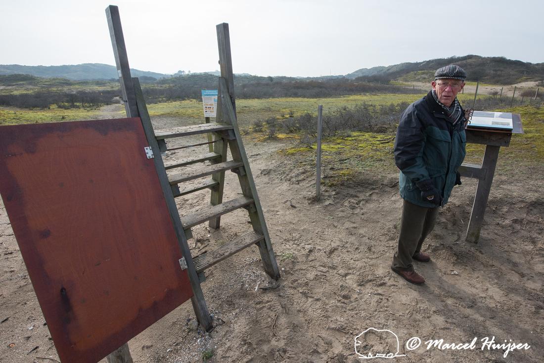 Area with reintroduced European bison (Bison bonasus), Kraansvla