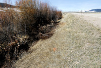 Brushing of shrubs in the right-of-way vegetation along Hwy 278, near Polaris, Montana, USA