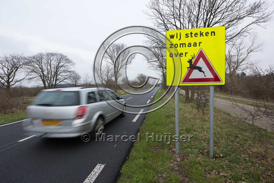 Wildlife warning sign, we cross unexpectedly, Bloemendaal aan Ze