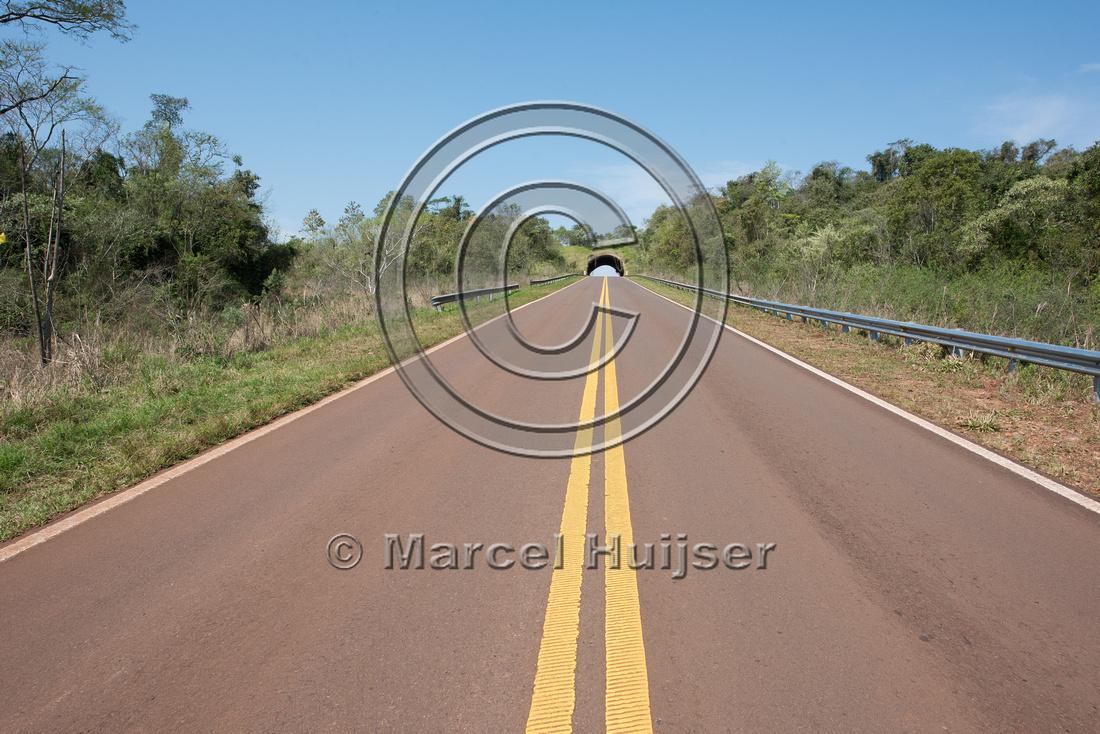 Wildlife overpass, Ruta 101, Misiones, Argentina