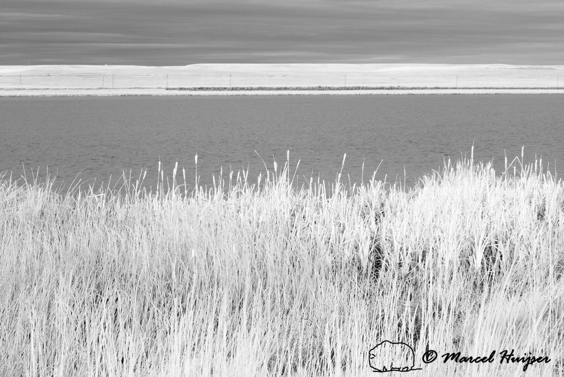 Freezout Lake in infrared, Montana, USA