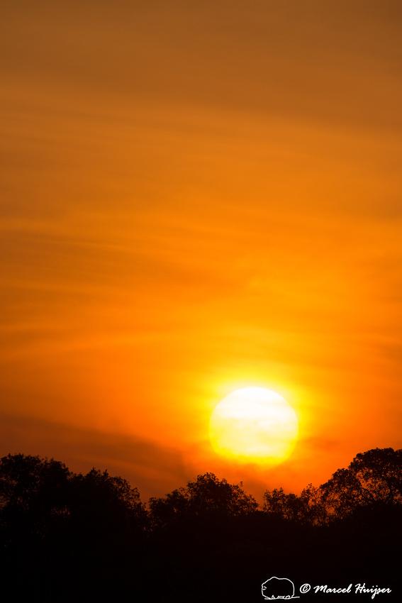 Sunset, Rio Negro, Pantanal, Mato Grosso do Sul, Brazil