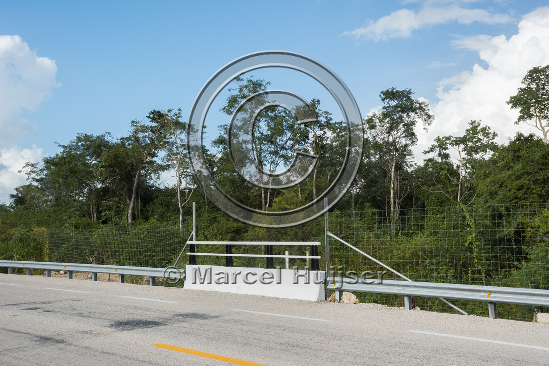 Wildlife fences and underpass, Nuevo Xcan-Playa Del Carmen highw