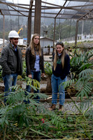 José Ridente, Fernanda Abra and Jamille Consulin at a plant nursery associated with the ongoing construction of the northern outer beltway (Rodoanel Norte) of São Paulo, Brazil