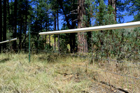 Livestock fence with plastic tube over the top wire, SR 260, west of Kohl's Ranch, Arizona, USA